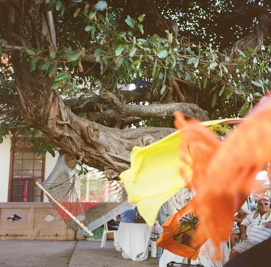 Michigan Wedding Photographer Destination Travel Costa Rica Film Photography Medium Format Rolleiflex Heather Jowett