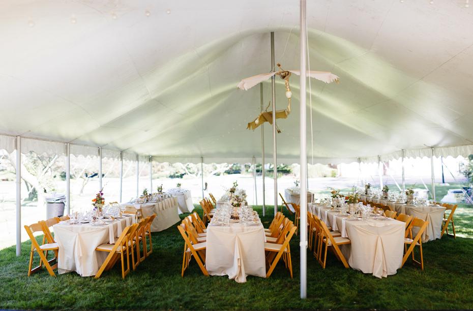 View of the tent at a backyard wedding reception by Ann Arbor Michigan wedding photographer, Heather Jowett.