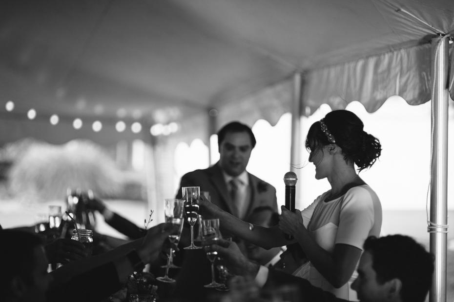 Toasts at a backyard wedding reception by Ann Arbor Michigan wedding photographer, Heather Jowett.