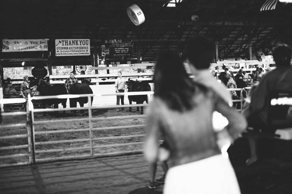 A couple watches the bull judging during their engagement session at the Saint Clair County 4h fair by photographer Heather Jowett.