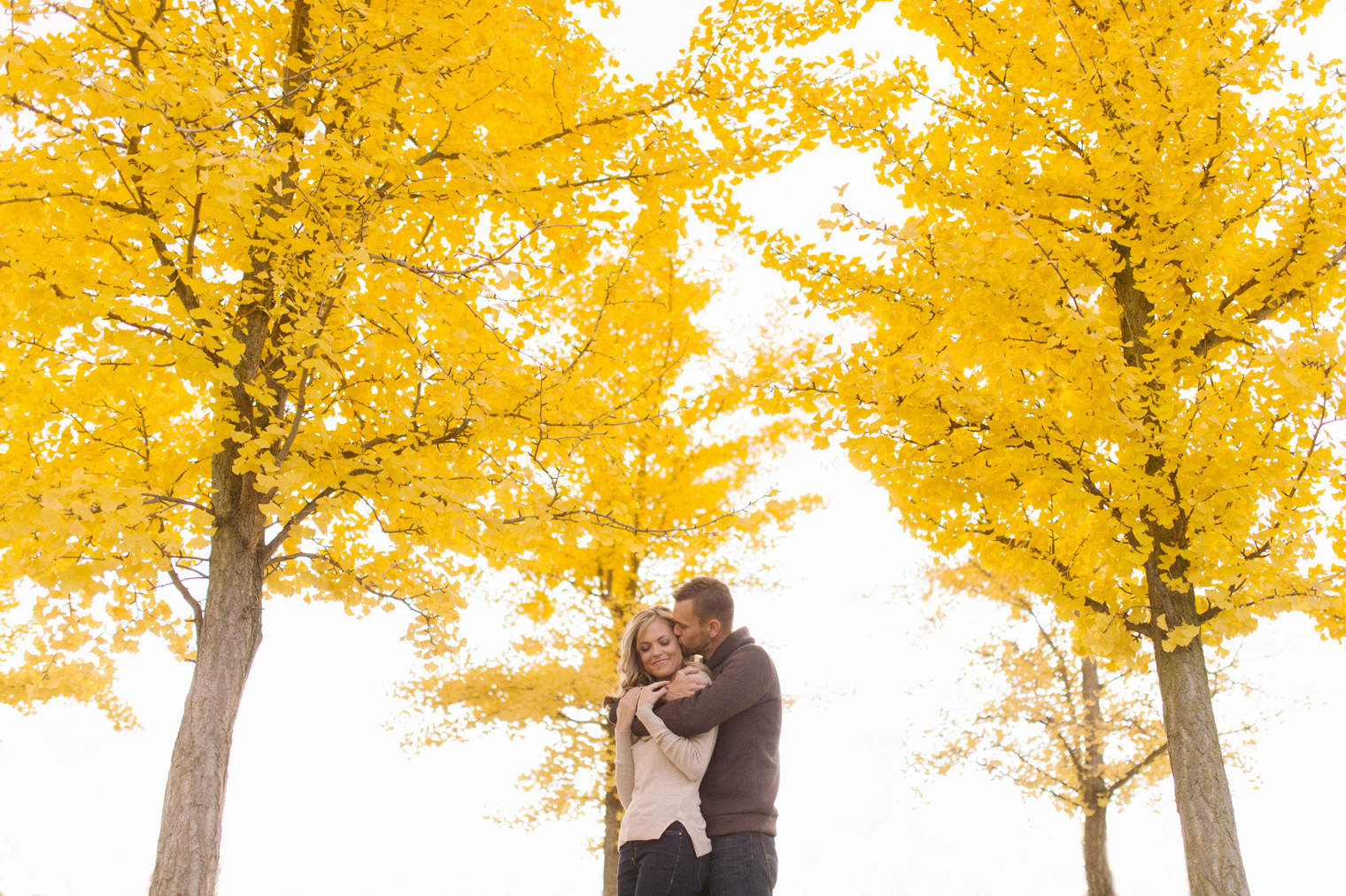 Stunning fall foliage at a couples session at the Matthei Botanical Gardens in Ann Arbor by wedding photographer Heather Jowett.