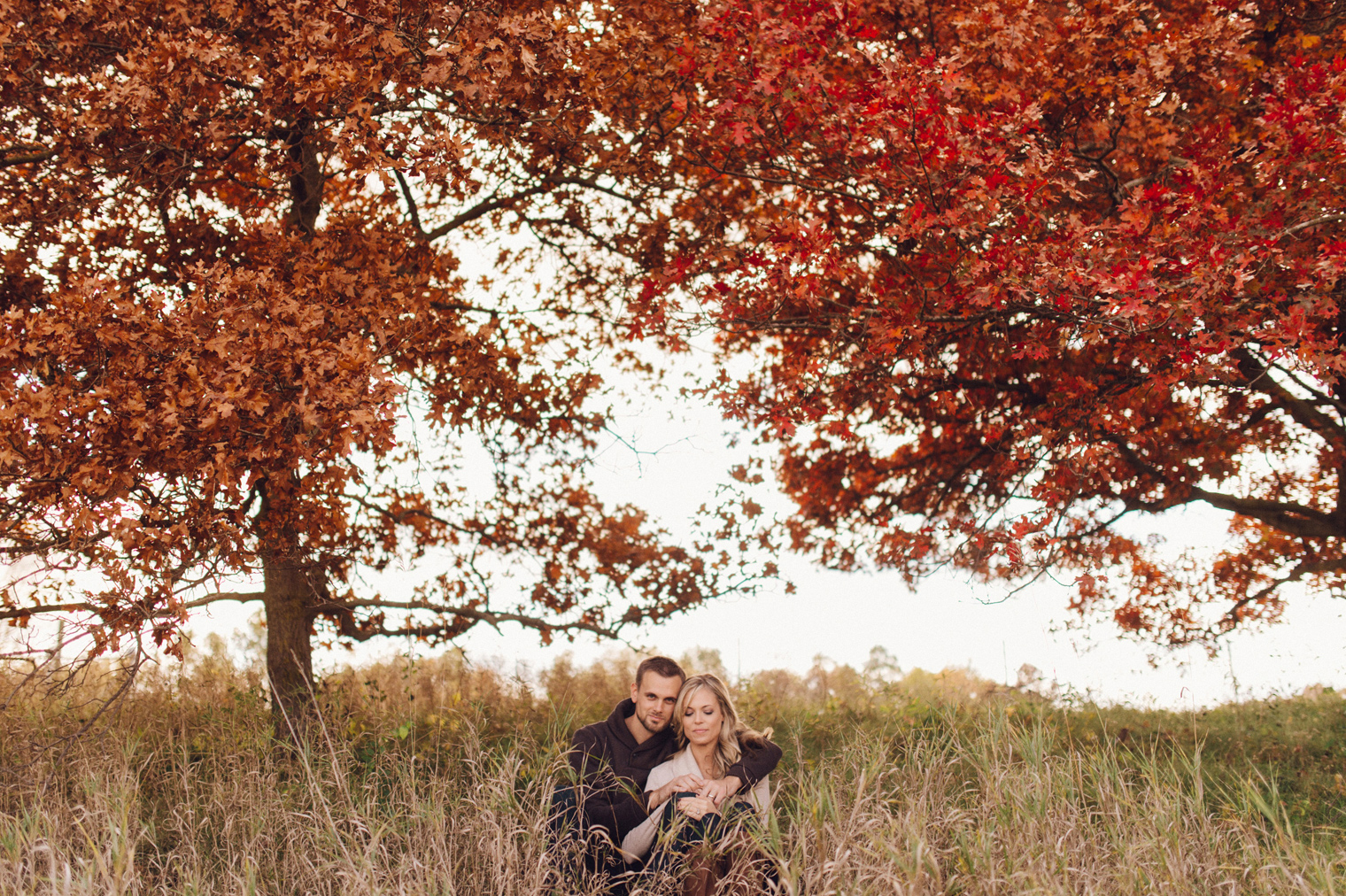 Bright red fall foliage at a fall couples photographyn at the Ann Arbor Botanical Gardens by wedding photographer Heather Jowett.