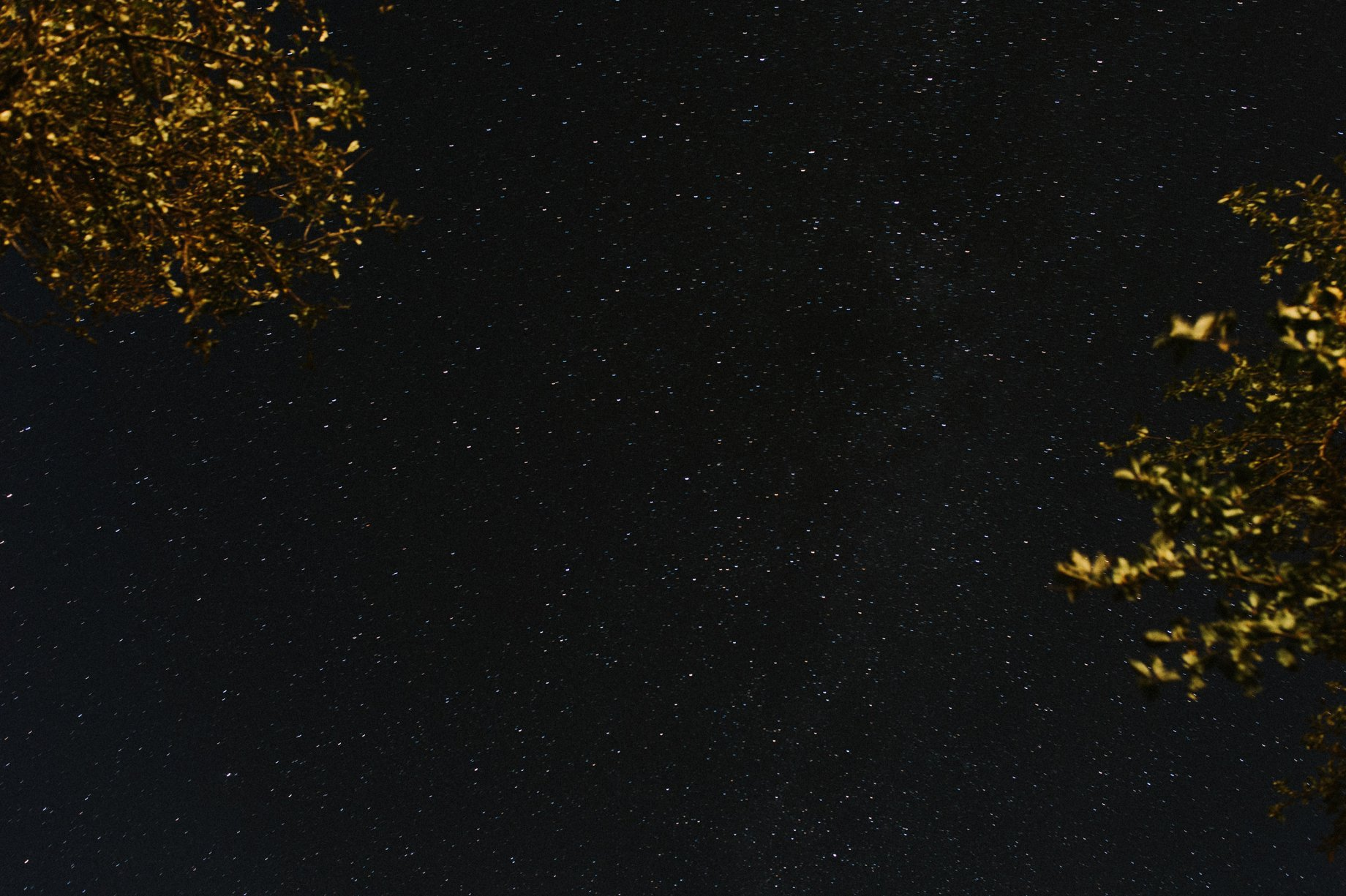 starry sky in the catskills