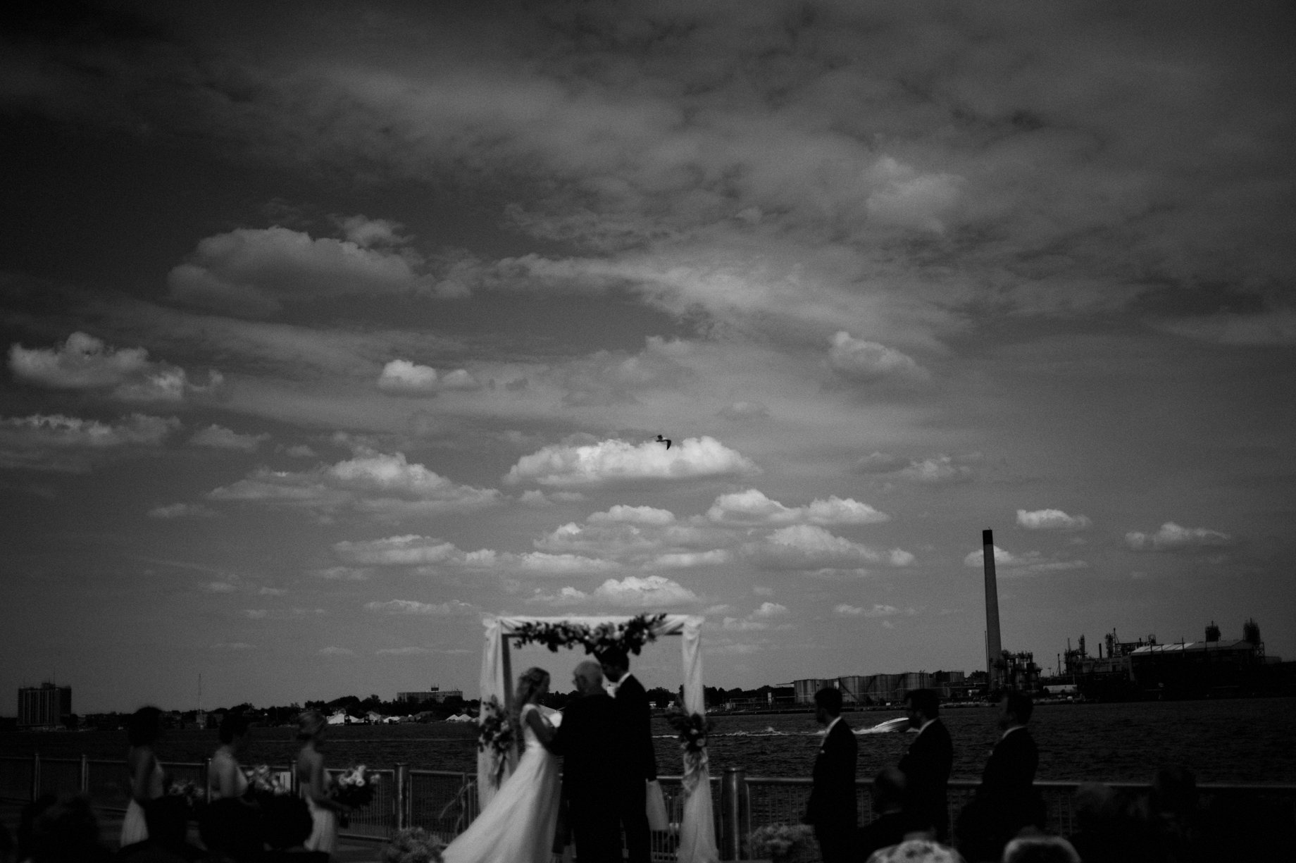 seagull wedding