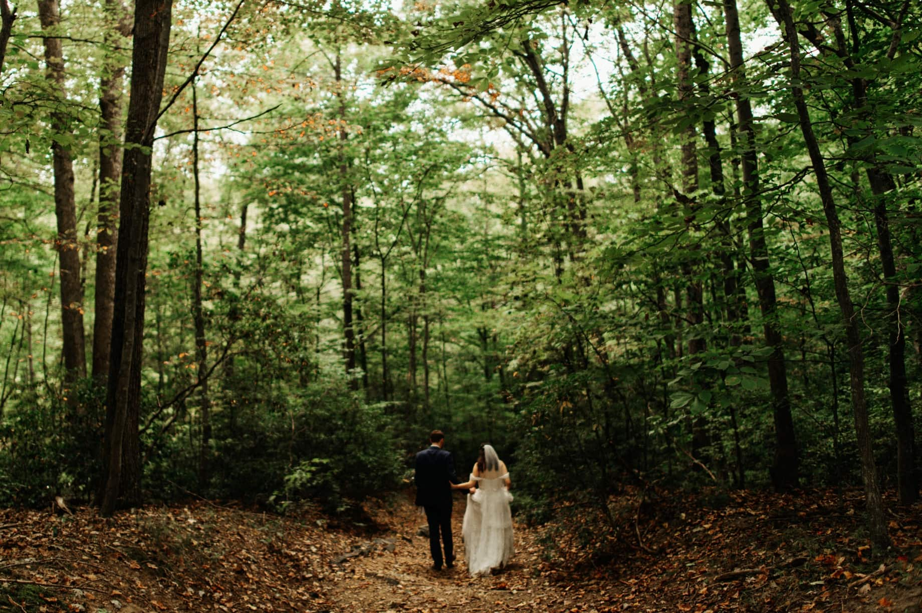 bride and groom portraits at prince william forest park